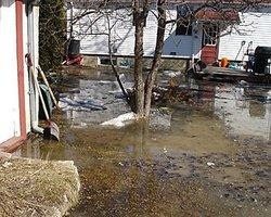 Floodedyard2007